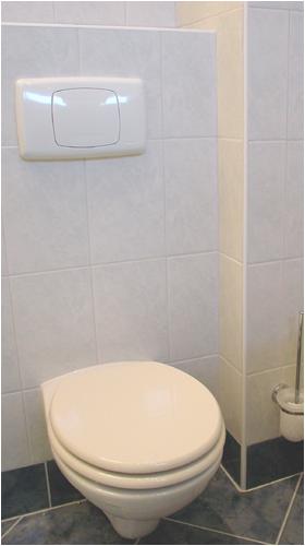 Rénover une toilette - Le groupe de rénovation Votre Bras Droit