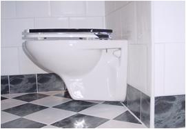 installation d un wc le groupe de r novation votre bras droit. Black Bedroom Furniture Sets. Home Design Ideas