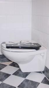 toilet-plaatsen